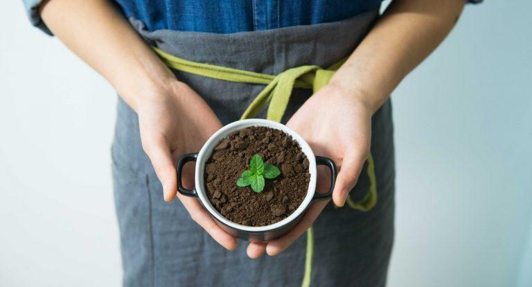 5 tips til en mere bæredygtig livsstil